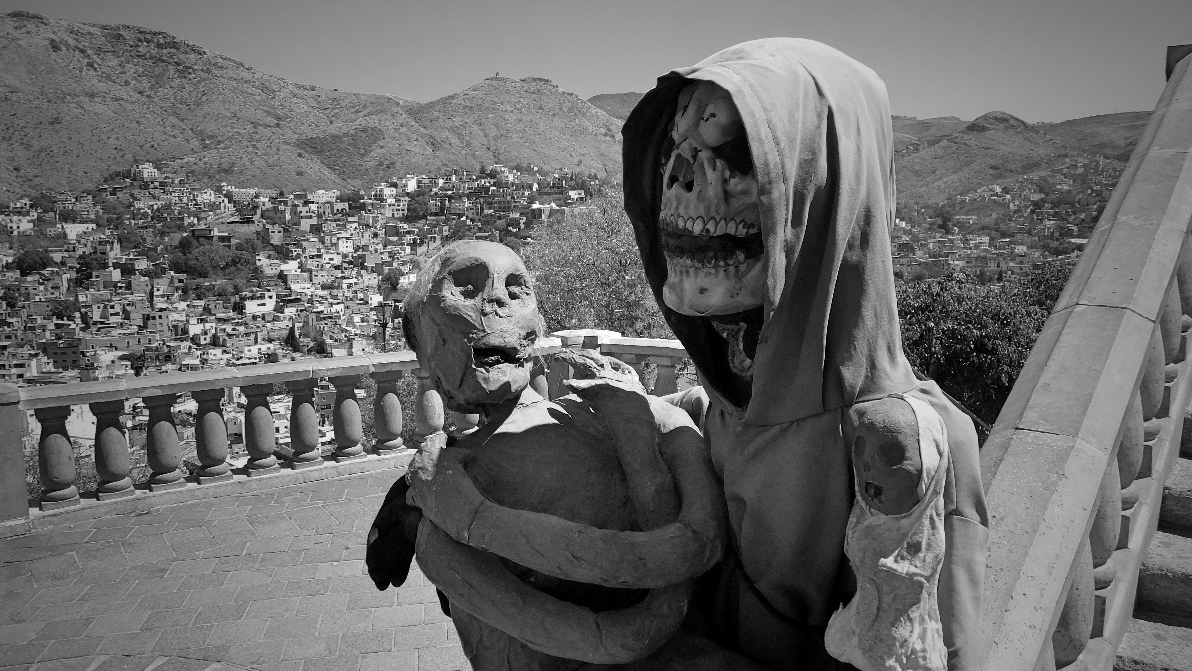 Ms. bones